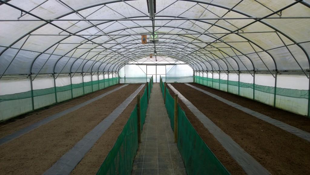 Voorbereiding om zelf slakken te kweken